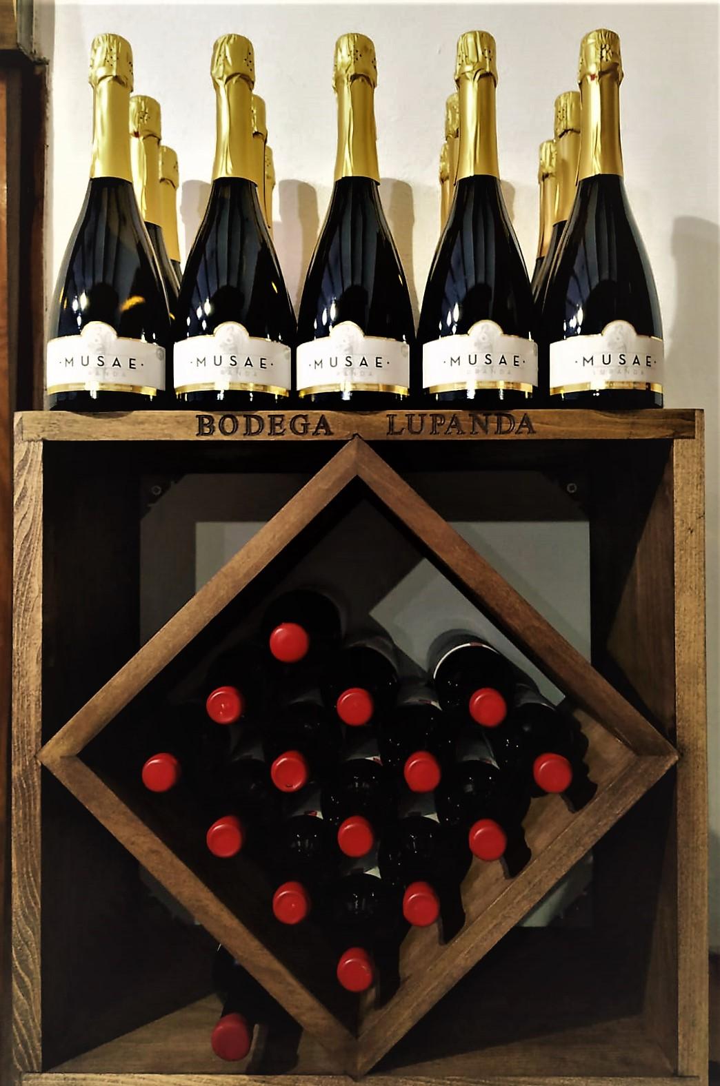 ¿Cómo conservar nuestros vinos correctamente en casa?